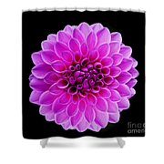 Flowers 71 Shower Curtain