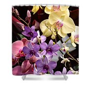 Flowers 868 Shower Curtain