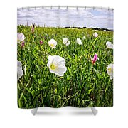 Flowers And Landscapes Along Texas Highway Roadside In Spring Shower Curtain