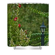 Flowers And Lanterns Shower Curtain