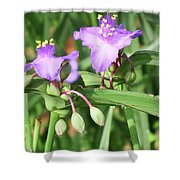 Flowers And Raindrops Shower Curtain