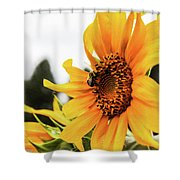 Flowers And The Bees Shower Curtain