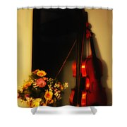 Flowers And Violin Shower Curtain
