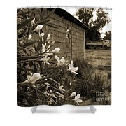 Flowers And Walls Shower Curtain