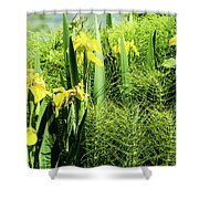 Flowers At Green Lake Shower Curtain