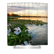 Flowers At Sunset Shower Curtain