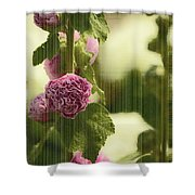 Flowers Behind The Screen Shower Curtain