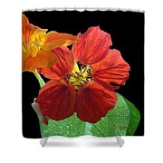 Flowers For Ebie Shower Curtain