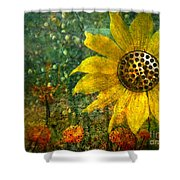 Flowers For Fun Shower Curtain