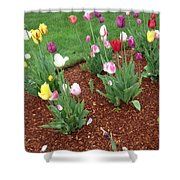Flowers  For The Fallen But Not Lost Shower Curtain