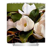 Flowers From The South Shower Curtain