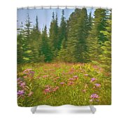 Flowers In A Mountain Glade Shower Curtain