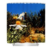 Flowers In Abstract 15 Shower Curtain