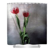 Flowers In Light Shower Curtain
