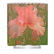 Flowers In Pink Shower Curtain