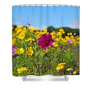 Flowers In The Field Shower Curtain