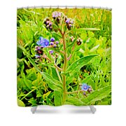 Flowers In The Garden Of Life Shower Curtain