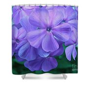 Flowers In The Garden Shower Curtain