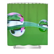 Flowers In The Raindrops Shower Curtain