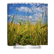 Flowers In The Wheat Shower Curtain