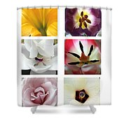 Flowers In The Yard Shower Curtain
