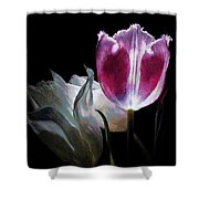 Flowers Lit Shower Curtain
