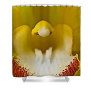 Flower's Mouth Shower Curtain