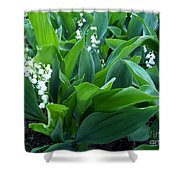 Flowers Of Hapiness Shower Curtain