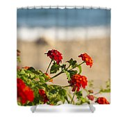Flowers Of Rhodes Shower Curtain