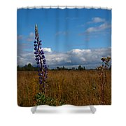 Flowers Of Leaving Summer Shower Curtain