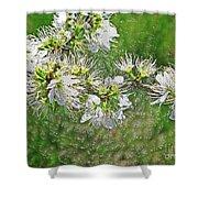 Flowers Of The Blackthorn Shrub Shower Curtain