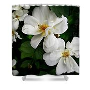 Flowers Of The Moon Shower Curtain