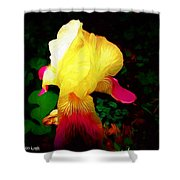 Flowers Of The Universe Shower Curtain