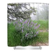 Flowers On A Foggy Day Shower Curtain