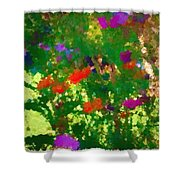 Flowers On Display As Abstract Art Shower Curtain