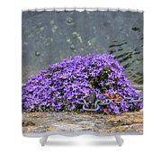 Flowers On The Stone Wall Shower Curtain