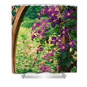 Flowers On Vine  Shower Curtain