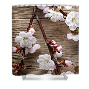 Flowers On Wall Shower Curtain