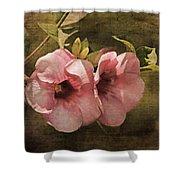 Flowers - Purple Allamanda 2 Shower Curtain