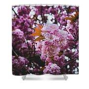 Leeds Pink Flower Shower Curtain