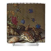 Flowers, Shells And Insects On A Stone Ledge Shower Curtain