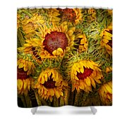 Flowers - Sunflowers - You're My Only Sunshine Shower Curtain by Mike Savad