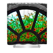 Flowers Through Basement Window At Monticello Shower Curtain
