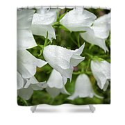 Flowers With Droplets 1 Shower Curtain