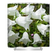 Flowers With Droplets 2 Shower Curtain