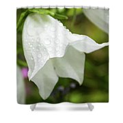 Flowers With Droplets 3 Shower Curtain