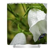 Flowers With Droplets 4 Shower Curtain