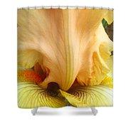 Flowerscape Yellow Iris One Shower Curtain
