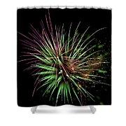 Flowerworks #11 Shower Curtain