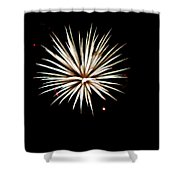 Flowerworks #16 Shower Curtain